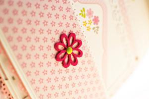 DSC 1453-1011 - ng - www beautypeonia com